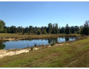 Lands End  , Carriere, MS 39426 (MLS #284978) :: Keller Williams Realty MS Gulf Coast