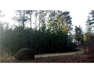 Lot 134 Dogwood Loop  , Carriere, MS 39426 (MLS #286408) :: Amanda & Associates at Keller Williams Realty