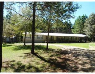 623  Magnolia Road  , Lumberton, MS 39455 (MLS #282185) :: Keller Williams Realty MS Gulf Coast