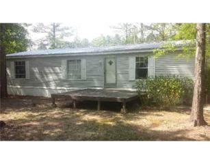 99  Diamond Rader Road  , Perkinston, MS 39573 (MLS #271218) :: Keller Williams Realty MS Gulf Coast