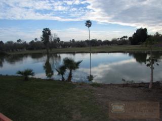 3500  Carmen Ave.  1304, Rancho Viejo, TX 78575 (MLS #52938) :: The Monica Benavides Team at Keller Williams Realty LRGV