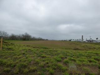 7.36  Ac  Montezuma  , Harlingen, TX 78550 (MLS #53228) :: The Monica Benavides Team at Keller Williams Realty LRGV