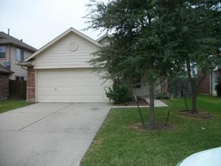 6038  Green Heather Ln  , Houston, TX 77085 (MLS #24773040) :: Carrington Real Estate Services