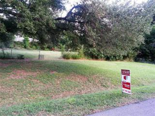 0  Cadawac Rd  , Houston, TX 77074 (MLS #25038303) :: REMAX Space Center - The Bly Team