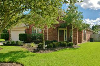 102  Ravenknoll Ct  , League City, TX 77573 (MLS #37992644) :: REMAX Space Center - The Bly Team