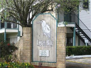 18515  Egret Bay Blv  1501, Webster, TX 77058 (MLS #43578624) :: Carrington Real Estate Services