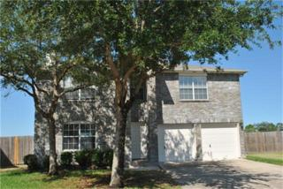 203  Glade Bridge Ln  , League City, TX 77539 (MLS #56165054) :: REMAX Space Center - The Bly Team