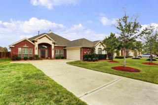 2523  Copper Fields Drive  , Rosharon, TX 77583 (MLS #65329448) :: Carrington Real Estate Services