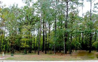 113  Pine Branch  , Montgomery, TX 77356 (MLS #65558246) :: The Home Branch