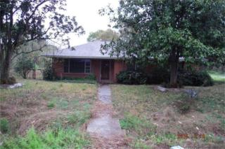 5913  Pate Rd  , Houston, TX 77016 (MLS #65921219) :: Carrington Real Estate Services