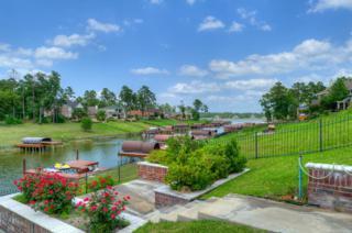 18790 E Cool Breeze Lane  , Montgomery, TX 77356 (MLS #69448994) :: The Home Branch