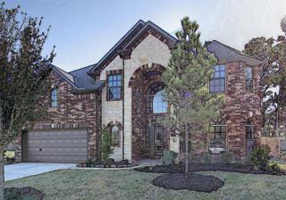 28030  Comal Karst  , Spring, TX 77386 (MLS #70929648) :: REMAX Space Center - The Bly Team