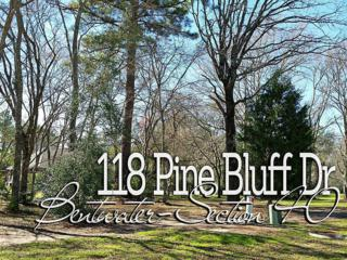 118  Pine Bluff Dr  , Montgomery, TX 77356 (MLS #72660024) :: REMAX Space Center - The Bly Team