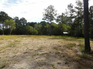 0  Fm 2917 County Road 200  , Alvin, TX 77511 (MLS #81562863) :: REMAX Space Center - The Bly Team