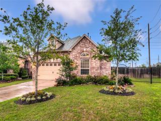 4959  Caponi Falls Ln  , Katy, TX 77494 (MLS #82396147) :: Carrington Real Estate Services