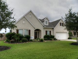 1320  Riverrock Ct  , Friendswood, TX 77546 (MLS #95472014) :: REMAX Space Center - The Bly Team