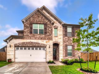 4215  Vining Rose  , Katy, TX 77494 (MLS #1007982) :: REMAX Space Center - The Bly Team