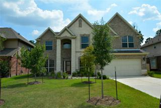 20534  Conery Grove Dr  , Porter, TX 77365 (MLS #11820715) :: Topmark Team, Keller Williams Signature