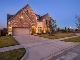 2819  Veneto Ct  , League City, TX 77573 (MLS #71213564) :: REMAX Space Center - The Bly Team