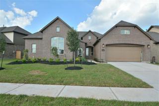3823  Birdsall Falls Lane  , Katy, TX 77494 (MLS #37955914) :: Topmark Team, Keller Williams Signature