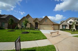 20506  Kurz Point Drive  , Richmond, TX 77406 (MLS #81264752) :: Topmark Team, Keller Williams Signature