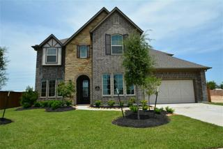 3806  Birdsall Falls Lane  , Katy, TX 77494 (MLS #80954933) :: Topmark Team, Keller Williams Signature