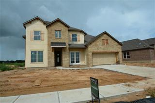 3819  Birdsall Falls  , Katy, TX 77494 (MLS #84829110) :: Topmark Team, Keller Williams Signature