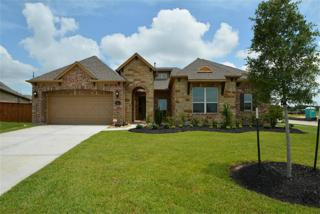 25702  Bang Springs Court  , Katy, TX 77494 (MLS #14025047) :: Topmark Team, Keller Williams Signature