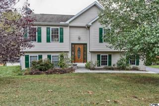 442  Big Sky Dr  , Etters, PA 17319 (MLS #10260883) :: Teampete Realty Services, Inc