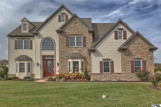 509  Jonagold Circle  , Mechanicsburg, PA 17055 (MLS #10261229) :: Teampete Realty Services, Inc
