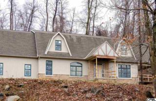 477  Granite Quarry Road  , New Cumberland, PA 17070 (MLS #10262667) :: The Heather Neidlinger Team