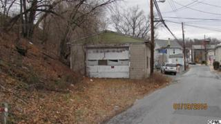 3rd Street  , West Fairview, PA 17025 (MLS #10263984) :: The Heather Neidlinger Team