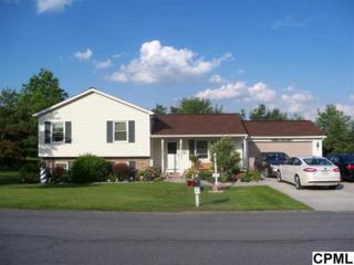 11  Goldenrod Drive  , Carlisle, PA 17015 (MLS #10264241) :: The Heather Neidlinger Team
