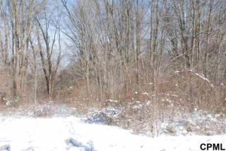 Lot 3  Singer Lane  , Dauphin, PA 17018 (MLS #10264375) :: Teampete Realty Services, Inc