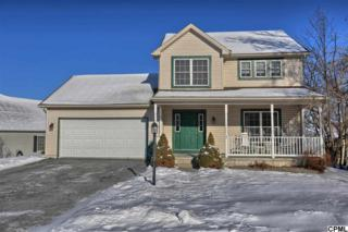 1  Grouse Road  , Dillsburg, PA 17019 (MLS #10264394) :: Teampete Realty Services, Inc