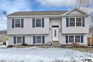 35  Apache Trail  , York Haven, PA 17370 (MLS #10265246) :: Teampete Realty Services, Inc