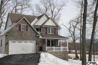Corner of  Poplar Ridge Lane & Rt 325  , Dauphin, PA 17018 (MLS #10265395) :: Teampete Realty Services, Inc