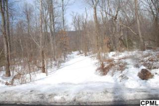 Corner of  Poplar Ridge Lane & Rt 325  , Dauphin, PA 17018 (MLS #10265397) :: Teampete Realty Services, Inc