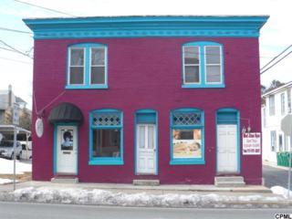 119-121 S 3rd St.  , Lemoyne, PA 17043 (MLS #10266499) :: The Heather Neidlinger Team
