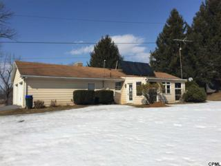 135 S Old Schoolhouse Rd  , Carlisle, PA 17105 (MLS #10266970) :: Teampete Realty Services, Inc