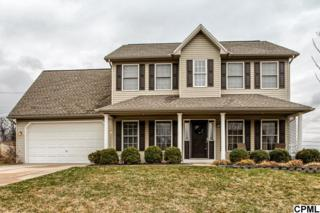 520 N Reeser Drive  , York Haven, PA 17370 (MLS #10267307) :: Teampete Realty Services, Inc