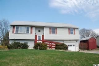 37  Burgners Mill Road  , Carlisle, PA 17015 (MLS #10267754) :: The Heather Neidlinger Team