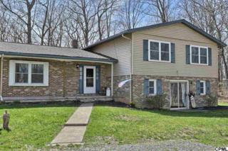 486  Middle Road  , Newville, PA 17241 (MLS #10267891) :: The Heather Neidlinger Team