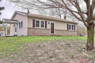 27  Hays Grove Rd  , Newville, PA 17241 (MLS #10268190) :: The Heather Neidlinger Team