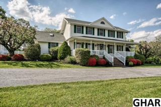 1425  Farmhouse Lane  , Middletown, PA 17057 (MLS #10269657) :: The Heather Neidlinger Team