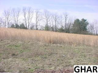 Lot 19  Olde Forge  , Lewisberry, PA 17339 (MLS #10270087) :: Teampete Realty Services, Inc