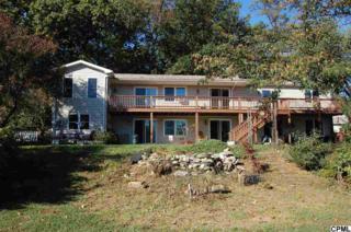 59  Blue Pond Rd  , Newville, PA 17241 (MLS #10244477) :: The Heather Neidlinger Team