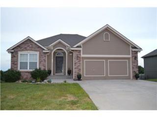 705  Briar Lane  , Kearney, MO 64060 (#1901769) :: Char MacCallum Real Estate Team