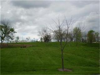 13909 NW Timber Ridge Street  , Parkville, MO 64152 (#1901780) :: Char MacCallum Real Estate Team