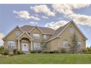 15007  Latham Street  , Gardner, KS 66030 (#1907735) :: Char MacCallum Real Estate Team